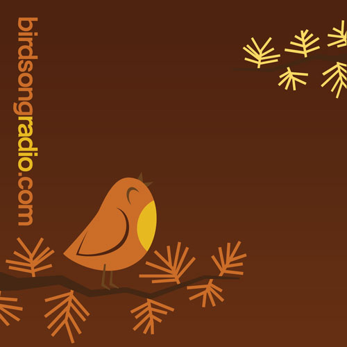 Birdsong Radio CD